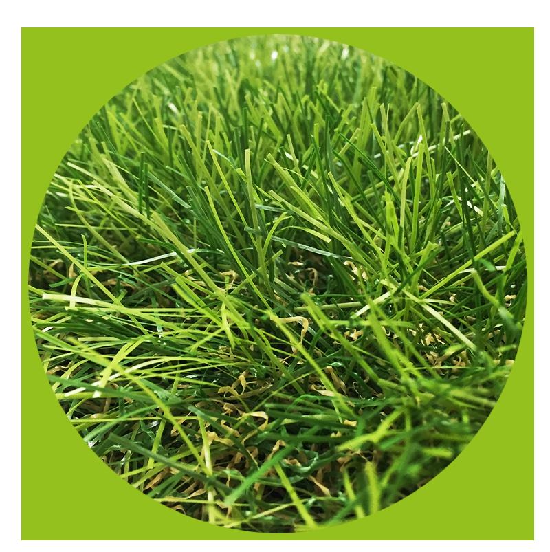 erba-home-circolare